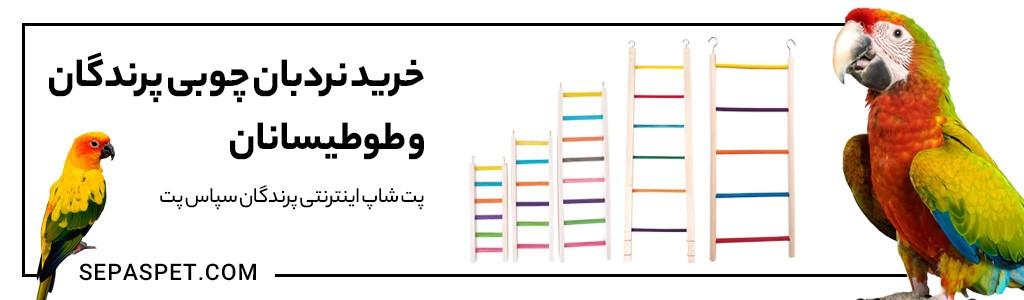 نردبان چوبی رنگی پرنده و طوطی سانان
