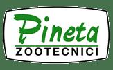پینتا Pineta